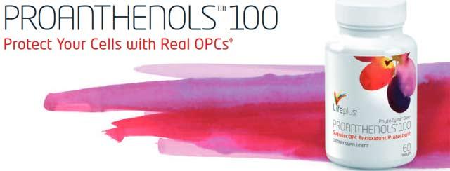 LifePlus Masquelier Proanthenols OPC Antioxidant